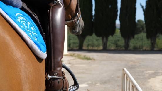 Clases de equitación Zaragoza Hípica