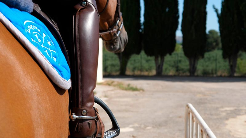 Botas montar caballo