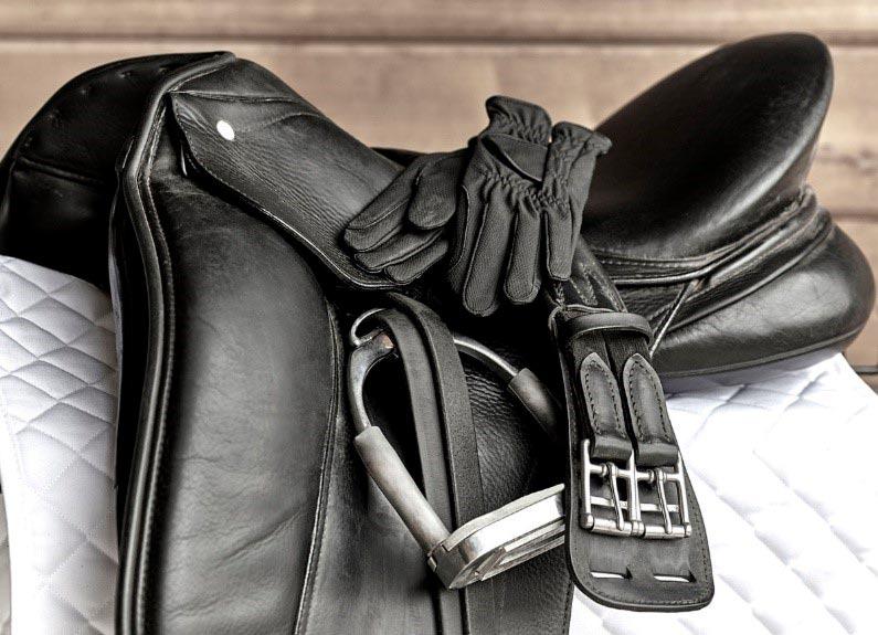Limpieza material equipo caballo