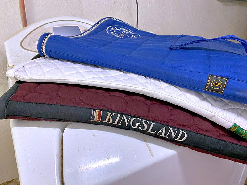 Servicio de lavandería hípica en Zaragoza