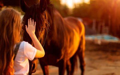 La Equitación durante la pandemia
